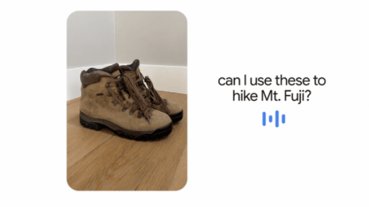 can-I-use-these-to-hike-Mt.Fuji